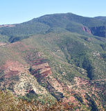 The dades valley in atlas moroco africa ground tree  and nobody Royalty Free Stock Photography