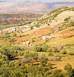 Dades valley in atlas moroco africa ground tree  and nobody Stock Images