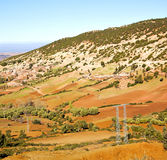 Dades valley in atlas moroco africa ground tree  and nobody Royalty Free Stock Image