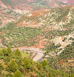 The dades valley in atlas moroco africa ground tree  and nobody Stock Photo