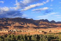Dades w Maroko zdjęcie stock