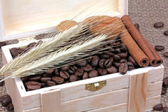 Dadi della cannella dei chicchi di caffè in una scatola di legno Fotografia Stock