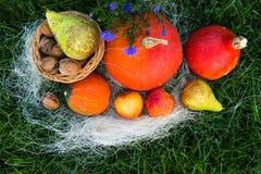 Dadi della pera della mela della zucca su erba verde Immagine Stock