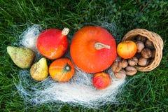 Dadi della pera della mela della zucca su erba verde Immagine Stock Libera da Diritti