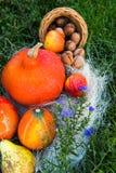 Dadi della pera della mela della zucca su erba verde Fotografia Stock Libera da Diritti
