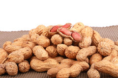 Dadi di scimmia, arachidi o arachidi nelle coperture, isolate su un fondo bianco Immagini Stock Libere da Diritti