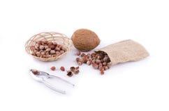 Dadi e noce di cocco con le schiaccianoci Immagine Stock