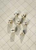 Dadi Polyhedral sulla griglia in bianco del gioco di roleplay Fotografia Stock
