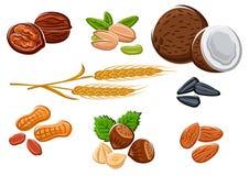 Dadi, semi di girasole ed orecchie del grano Immagini Stock