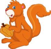 Dado sveglio della tenuta dello scoiattolo Immagine Stock Libera da Diritti