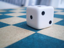 Dados en tarjeta de ajedrez Imagen de archivo libre de regalías