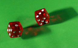 Dados vermelhos de rolamento na tabela verde Fotos de Stock
