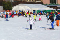Daemyung Vivaldi Park ski resorts, attractions Royalty Free Stock Photography