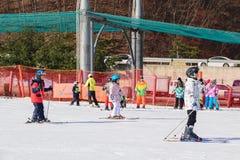 Daemyung Vivaldi Park skidar semesterorter, Royaltyfri Foto