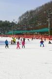 Daemyung Vivaldi parka ośrodki narciarscy, Obraz Stock