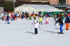 Daemyung Vivaldi parka ośrodki narciarscy, przyciągania Fotografia Royalty Free
