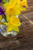 Daffodil пасхи Стоковая Фотография RF