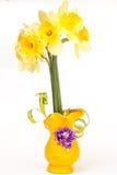 Daffodil Στοκ φωτογραφία με δικαίωμα ελεύθερης χρήσης