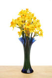 Daffodil arrangement Royalty Free Stock Photos