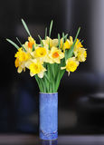 Daffodil arrangement Stock Photos