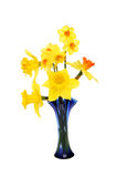 Daffodil arrangement Royalty Free Stock Photography