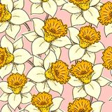 daffodil bezszwowy deseniowy Zdjęcia Royalty Free