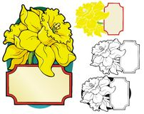Daffodil bookplate Royalty Free Stock Photos