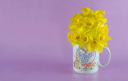 Daffodil Bouquet in Mom Coffee Mug on Pink Background Stock Photo