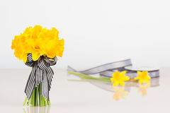 Daffodil bouquet with roll of ribbon Stock Photo