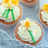 Daffodil cupcakes Royalty Free Stock Image