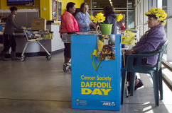 Daffodil Day - Cancer Society Stock Photography