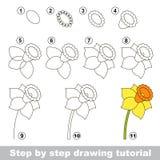 Daffodil. Drawing tutorial. Yellow cartoon daffodil. Step by step drawing tutorial Royalty Free Stock Photo