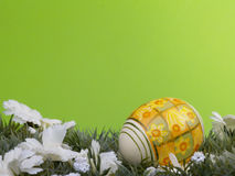 Daffodil easter egg Stock Photography