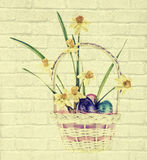 Daffodil & Easter Eggs in Basket - Brick Texture Stock Images