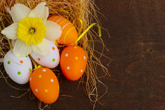 Daffodil And Easter Eggs Stock Photos