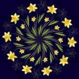 Daffodil floral medallion pattern, vector mandala ornament. Fashion style for prints, silk textile, cushion pillow, kerchief. Flor Stock Photos