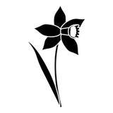 Daffodil flower leaf bloom pictogram Stock Image