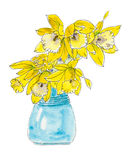 Daffodil flowers in a blue vase. Watercolor of daffodil flowers in a blue vase vector illustration