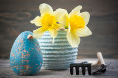 Daffodil flowers in pot with gardening tools Stock Images