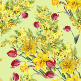 Daffodil, mimosa, tulip flowers, watercolor, pattern seamless Stock Photography