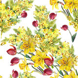 Daffodil, mimosa, tulip flowers, watercolor, pattern seamless Royalty Free Stock Image
