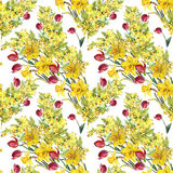 Daffodil, mimosa, tulip flowers, watercolor, pattern seamless Royalty Free Stock Photo