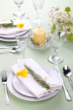 Daffodil table settings royalty free stock images