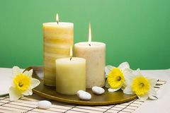 Daffodiles aroma therapy set Stock Image