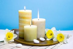 Daffodiles aroma therapy set Stock Photography