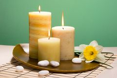 Daffodiles aroma therapy set Royalty Free Stock Photography