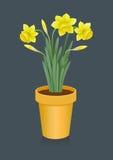 daffodils άνοιξη δοχείων Στοκ φωτογραφία με δικαίωμα ελεύθερης χρήσης