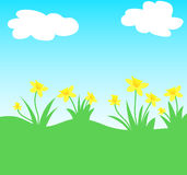 daffodils λουλούδια Στοκ Εικόνες