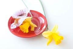 Daffodils σε ένα κενό πιατάκι στα cupcakes Στοκ Φωτογραφίες