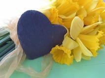 Daffodils весны Стоковые Фотографии RF